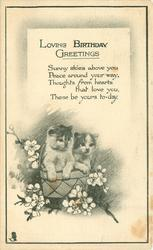 LOVING BIRTHDAY GREETINGS  two kittens in floral basket