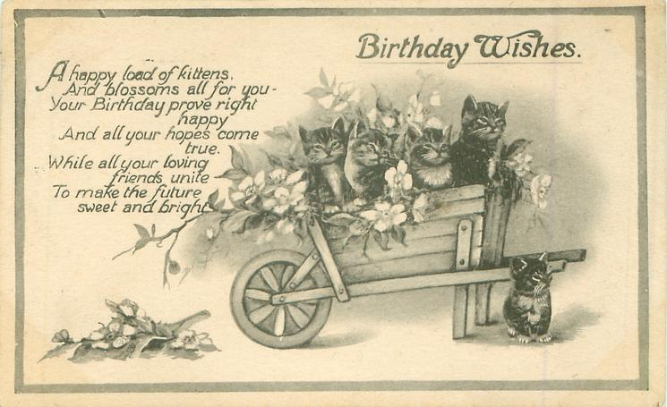 BIRTHDAY WISHES  wheelbarrow, flowers & five kittens