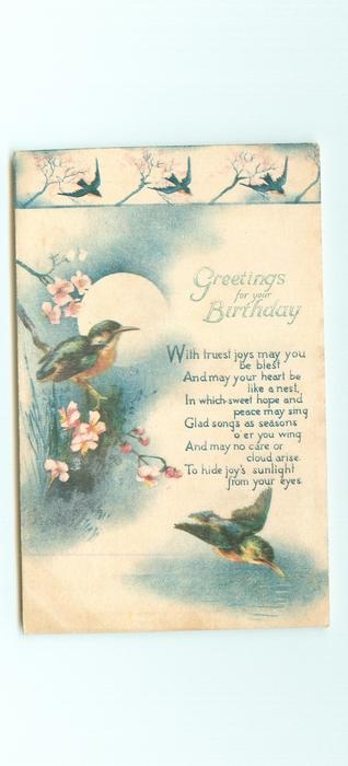 GREETINGS FOR YOUR BIRTHDAY  kingfishers