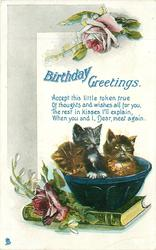 BIRTHDAY GREETINGS  two kittens in bowl, roses above & left