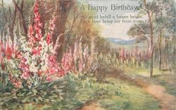 A HAPPY BIRTHDAY   foxgloves in a rural setting