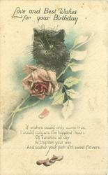 LOVE AND BEST WISHES FOR YOUR BIRTHDAY black cat, rose