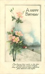 A HAPPY BIRTHDAY wild rose & rural inset