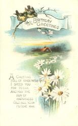 BIRTHDAY GREETINGS  two birds, daisies, cottage behind meadow