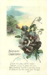 BIRTHDAY GREETINGS pansies, trees & meadow