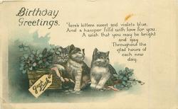 BIRTHDAY  GREETINGS three kittens & basket of flowers