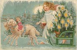 A MERRY CHRISTMAS  angel walks beside sled, pulled by two sheep, carrying  lighted tree