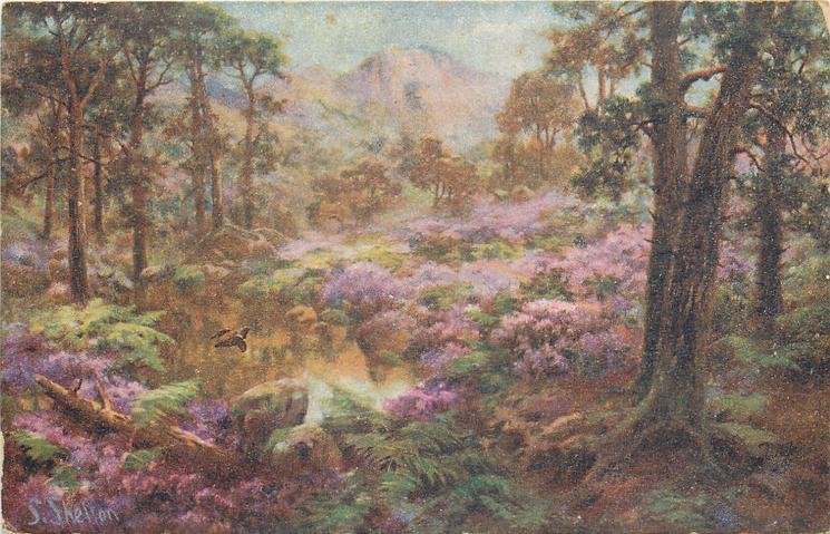 woodland scene, purple flowers around pond, mountains in background, bird in flight over pond
