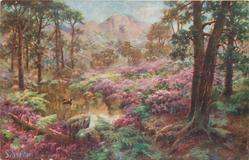 woodland scene, purple rhododendrons around pond, distant mountains, bird in flight over pond