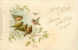 MANY HAPPY RETURNS OF THE DAY TO YOU  FROM   robins & sparrows