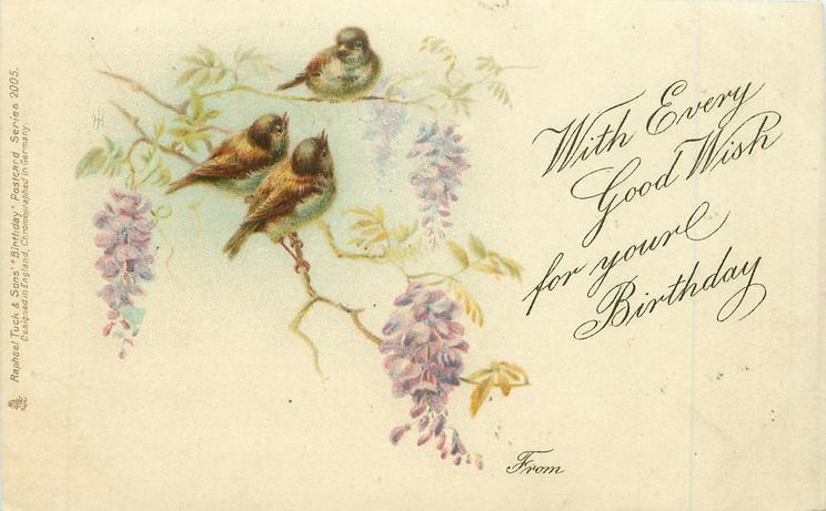 WITH EVERY GOOD WISH FOR YOUR BIRTHDAY  FROM  three sparrows on wisteria