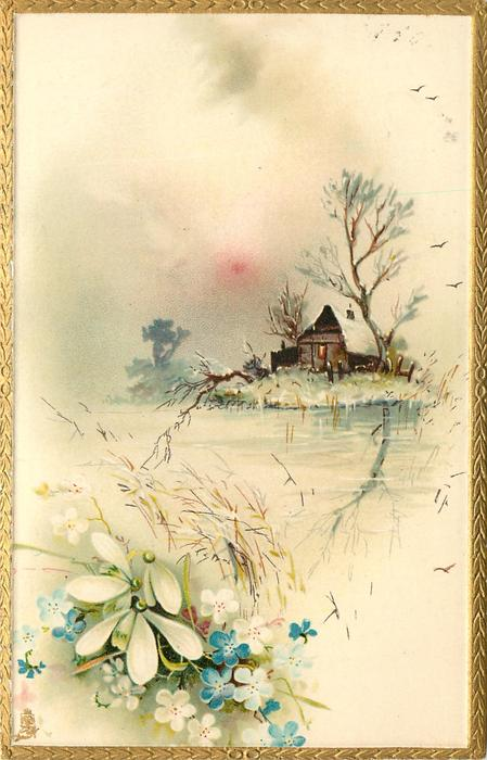 cottage across water with reflections, snowdrops & forget-me-nots lower left