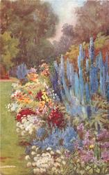 multicoloured flowers & tall blue delphiniums in front of wall on right