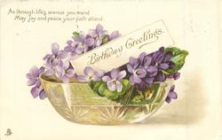 BIRTHDAY GREETINGS  glass bowl full of violets