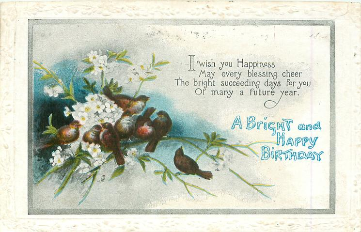 A BRIGHT AND HAPPY BIRTHDAY   birds, white flowers