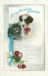 LOVING BIRTHDAY be-ribboned cat & dog above flowers