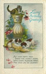 LOVING BIRTHDAY GREETINGS  kitten on sundial, puppies play with shoe