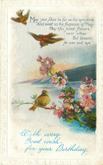 WITH EVERY GOOD WISH FOR YOUR BIRTHDAY  blossom, three birds, seascape