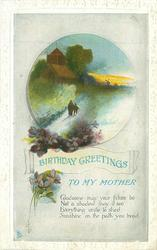 BIRTHDAY GREETINGS TO MY MOTHER  rural evening scene, violets