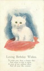 LOVING BIRTHDAY WISHES  white kitten sits on pink cushion