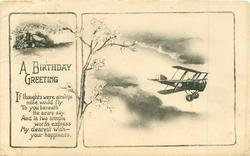 A BIRTHDAY GREETING antique airplane, blossom tree