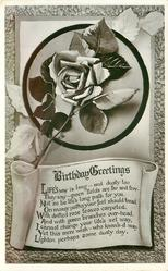 BIRTHDAY GREETINGS  rose above scroll