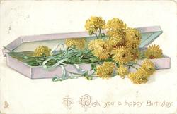 TO WISH YOU A HAPPY BIRTHDAY  box of long stemmed yellow chrysanthemums