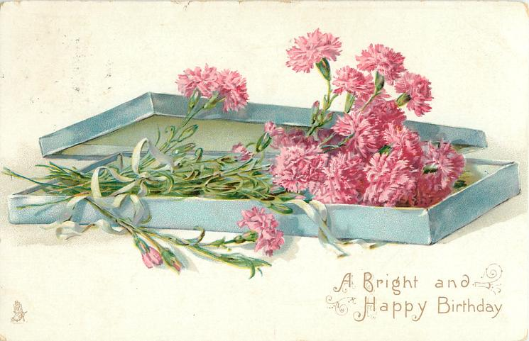 A BRIGHT AND HAPPY BIRTHDAY or A BRIGHT AND HAPPY CHRISTMAS TO YOU  box of long pink carnations