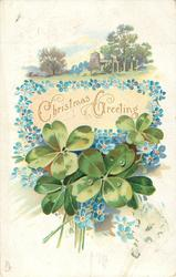 CHRISTMAS GREETINGS or A BRIGHT AND HAPPY BIRTHDAY  green 4 leaf clovers, blue forget-me-nots, church and trees behind