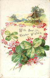WITH BEST EASTER WISHES or A HAPPY CHRISTMAS TO YOU  green 4 leaf clovers, red dog-roses, cottage behind