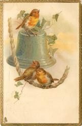 two birds on rope, another on bell above