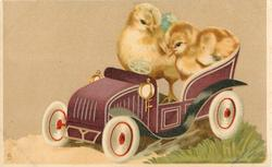 two chicks in toy purple car