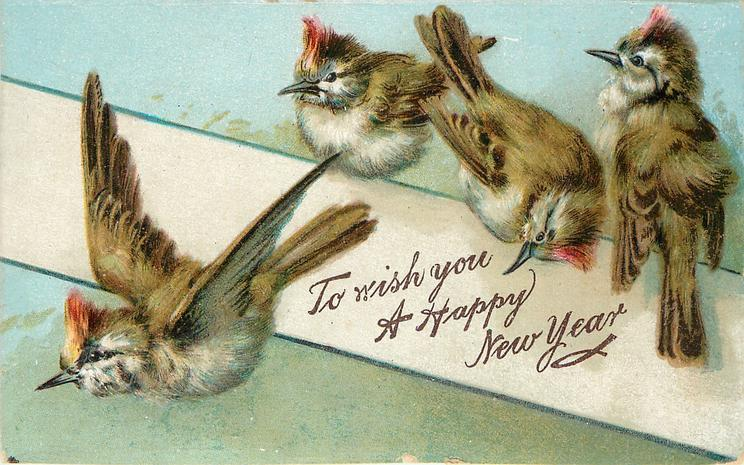 TO WISH YOU A HAPPY NEW YEAR  four red crested brown finches, one flies