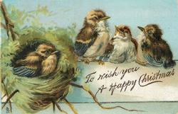 TO WISH YOU A HAPPY CHRISTMAS  four fledgling birds, one on the nest