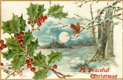 A PEACEFUL CHRISTMAS  moonlit snowy rural scene, squirrel on branch, holly left