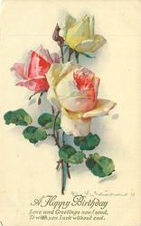 A HAPPY BIRTHDAY  white rose & bud above two pink/white roses