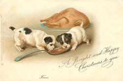 A BRIGHT AND HAPPY CHRISTMAS TO YOU  two puppies lick spoon, turkey behind