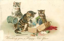 WISHING YOU A HAPPY NEW YEAR  three cats one holding blanket roll, others take things out of suitcase
