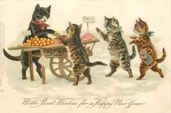 WITH BEST WISHES FOR A HAPPY NEW YEAR  three  kittens patronise a fruit stall