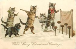 WITH LOVING CHRISTMAS GREETINGS  three cats & two kittens throw sticks at coconuts