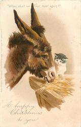 A HAPPY CHRISTMAS TO YOU  donkey with kitten on manger