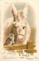 A HAPPY CHRISTMAS  donkey  with kitten on fence