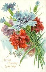 LOVING BIRTHDAY GREETINGS red, blue & purple carnations, stalks right