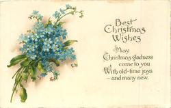 BEST CHRISTMAS WISHES  forget-me-nots