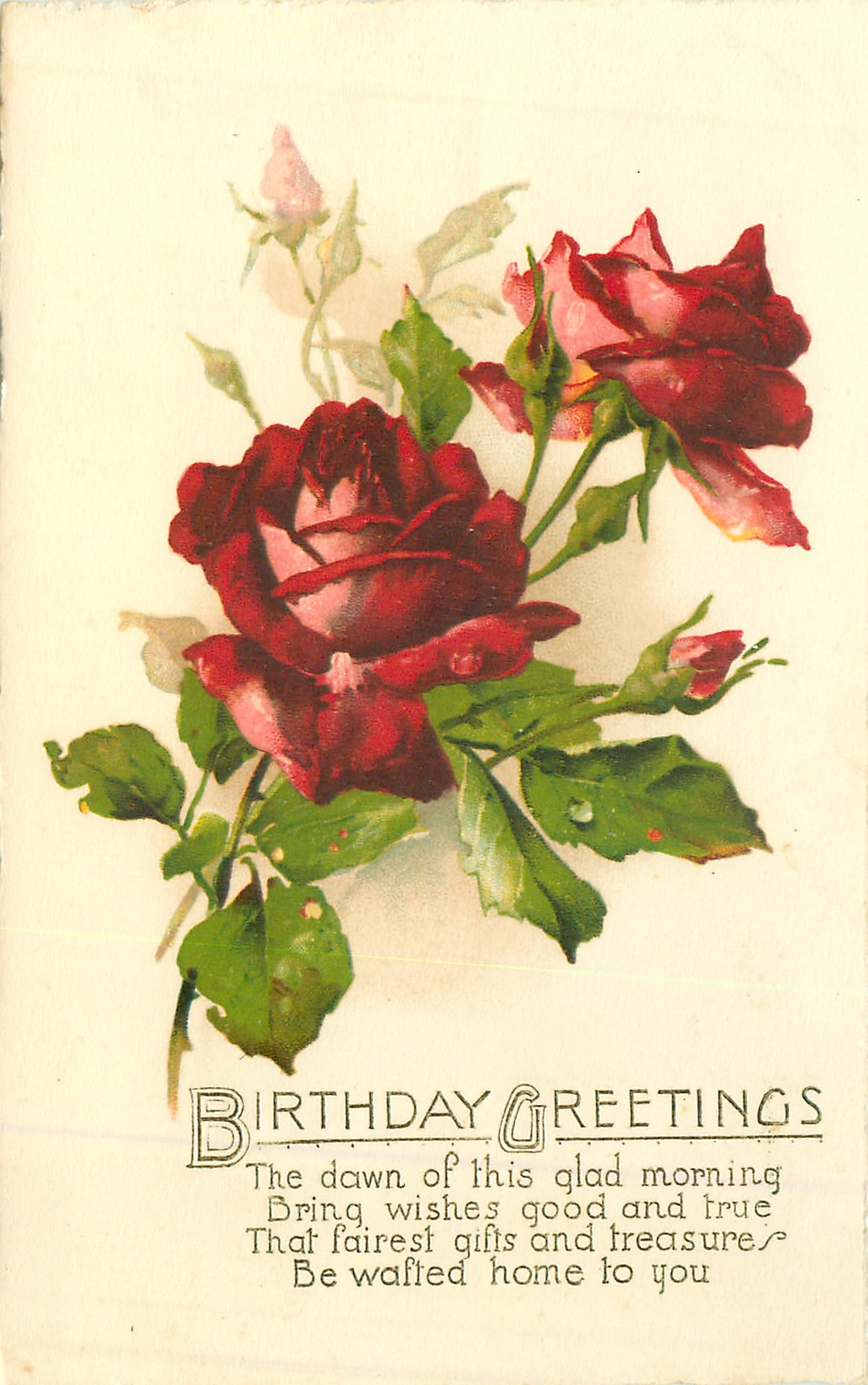 Birthday Greetings Red Roses Tuckdb Postcards