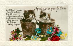 GREETINGS ON YOUR BIRTHDAY two kittens in flower-pots