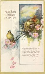 MANY HAPPY RETURNS OF THE DAY bird on nest in tree in blossom, another bird perched left