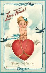 LOVE KISS'S! TO MY VALENTINE  cupid rides a heart