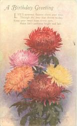 A BIRTHDAY GREETING  chrysanthemums, two bronze, a pink, a yellow & an orange