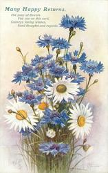 MANY HAPPY RETURNS. white yellow centered daisies  & blue cornflowers